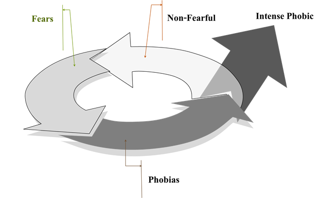 รูปที่ 1 Atchariya's Fear cycle ประมวลผลจากแนวคิดของ Davidson (1994) และ Hillary (2014)